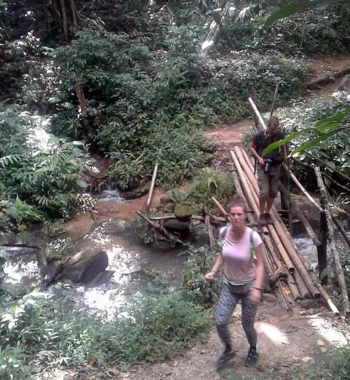 Doi Inthanon trail hike Thailand
