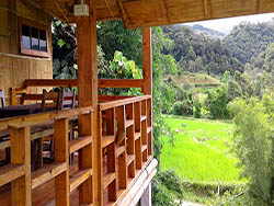 Rice field Bungalow at Doi Inthanon National Park Thailand