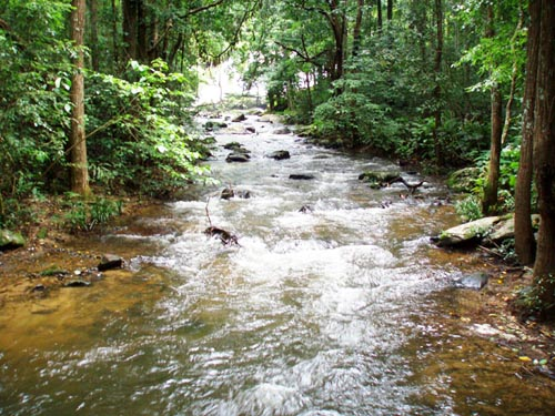 Stream at bungalow at Doi Inthanon National Park Thailand